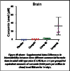 Asset 2-1
